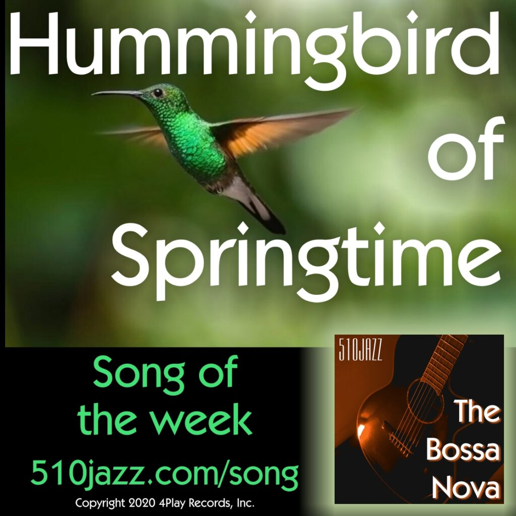 Hummingbird Of Springtime - Song Of The Week, August 1, 2020